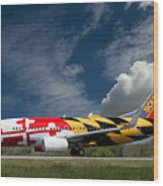 737 Maryland On Take-off Roll Wood Print