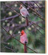 7440-008 Cardinal Wood Print