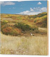 7797 Ranch Of Color Wood Print