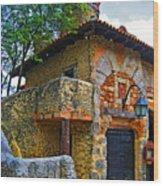 Altos De Chavon Texture. Wood Print