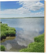 Cape Cod Salt Pond Wood Print