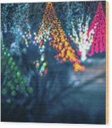 Christmas Season Decorationsafter Sunset At The Gardens Wood Print