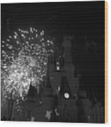 Cinderella Castle Wood Print