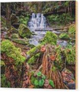 Goit Stock Waterfall Wood Print
