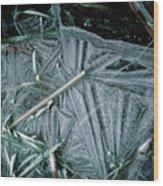 8. Ice Patterns, Whitfield Wood Print