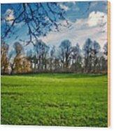 Landscape Graphics Wood Print