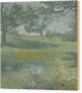 Meadows Wood Print