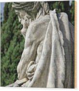 Monumental Cemetery Of Staglieno Wood Print
