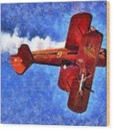 Painting Of Wingwalker Danielle Wood Print