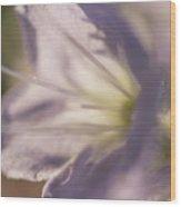 Pastel Purple Flowers Wood Print