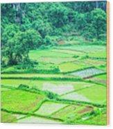 Rice Fields Scenery Wood Print