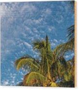 8156- Palm Tree Wood Print