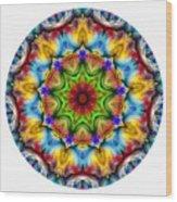 816-04-2015 Talisman Wood Print
