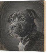 8321145 Wood Print