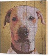 8353537 Wood Print