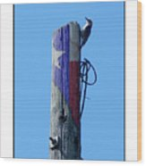 #8667 Woodpecker Wood Print