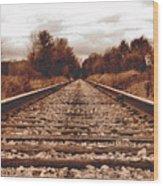 86ed On The Tracks Wood Print