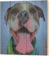 8786391 Wood Print