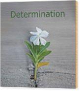 88- Determination Wood Print