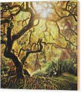 9 Abstract Japanese Maple Tree Wood Print