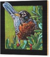 Birdman Of Alcatraz Detail Wood Print