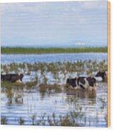 Lake Beysehir - Turkey Wood Print