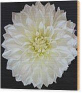 Macro Shot Of Flower Wood Print