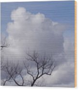 Montana Clouds Wood Print