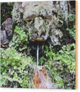 Public Fountain In Palma Majorca Spain Wood Print