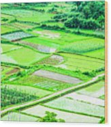 Rice Fields Scenery Wood Print