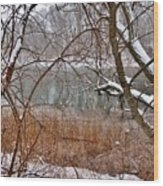 The Bass River In Winter Wood Print