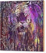 Tiger Predator Fur Beautiful  Wood Print