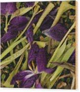 Tulips Wilting Wood Print