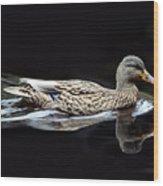 9246 Female Mallard Wood Print