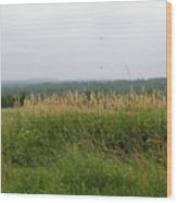#940 D1096 Farmer Browns West Newbury Wood Print