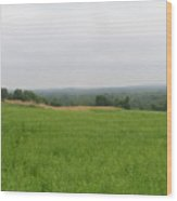 #940 D1100 Farmer Browns West Newbury Wood Print