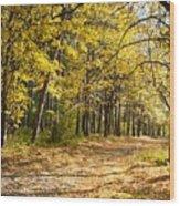 Nature Wood Print