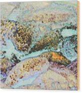 9690 Wood Print by Jim Simms