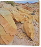 A Band Of Gold In Valley Of Fire Wood Print