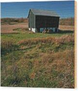 A Barn In Mid Autumn  Wood Print