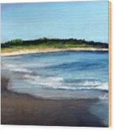 A Beach In Smithfield Wood Print