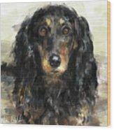 A Beautiful Artistic Painting Of A Dachshund  Wood Print