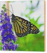 A Beautiful Monarch Wood Print