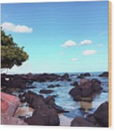 A Beautiful View Of The Sea From Mauritius Wood Print
