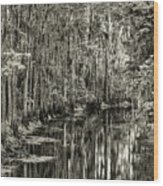 A Bend In The Creek Wood Print