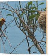 A Bird In 3d Wood Print