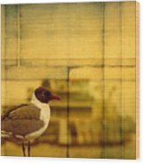 A Bird In New Orleans Wood Print