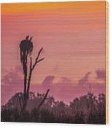 A Birdie Morning Wood Print
