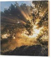 A Blast Of Sunrise Wood Print