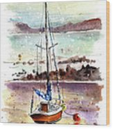 A Boat On Anglesey 01 Wood Print